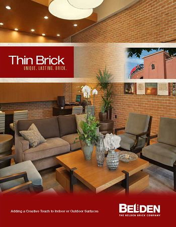 Thin Brick Brochure